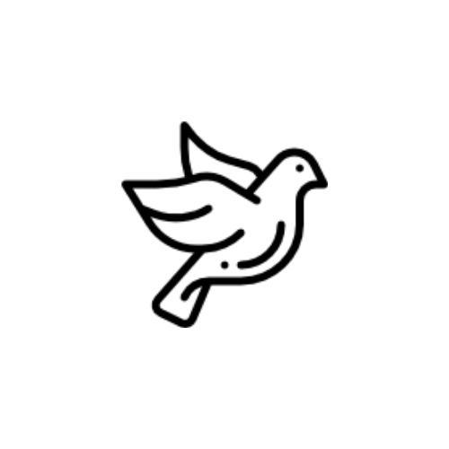 God, Jesus, The Holy Spirit